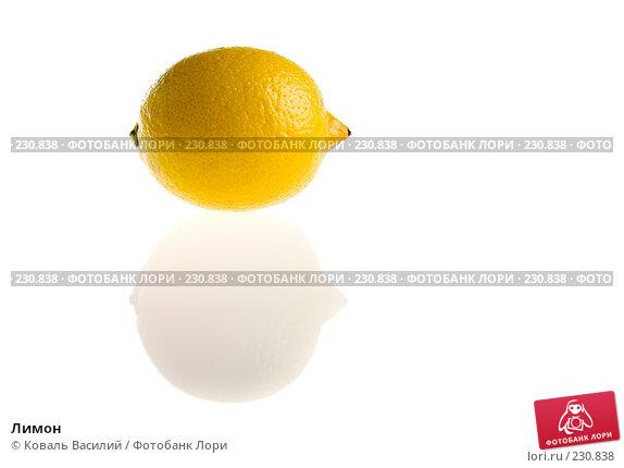 Купить «Лимон», фото № 230838, снято 21 марта 2008 г. (c) Коваль Василий / Фотобанк Лори