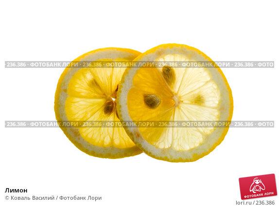Купить «Лимон», фото № 236386, снято 23 апреля 2018 г. (c) Коваль Василий / Фотобанк Лори