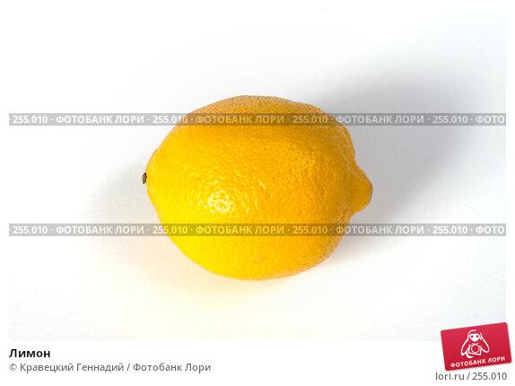 Лимон, фото № 255010, снято 24 сентября 2004 г. (c) Кравецкий Геннадий / Фотобанк Лори