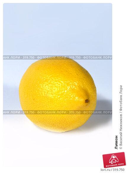 Лимон, фото № 319750, снято 30 апреля 2017 г. (c) Василий Нижников / Фотобанк Лори
