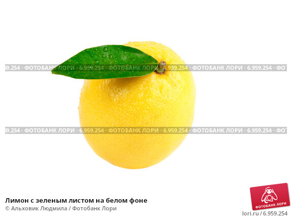 Лимон с зеленым листом на белом фоне. Стоковое фото, фотограф Альховик Людмила / Фотобанк Лори