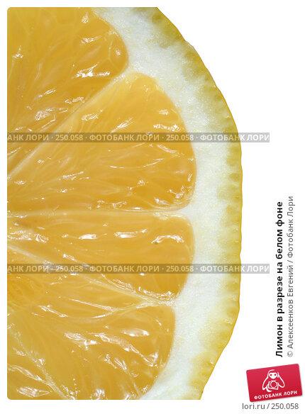 Лимон в разрезе на белом фоне, фото № 250058, снято 15 марта 2008 г. (c) Алексеенков Евгений / Фотобанк Лори
