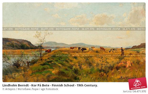 Lindholm Berndt - Kor På Bete - Finnish School - 19th Century. Редакционное фото, фотограф Artepics / age Fotostock / Фотобанк Лори