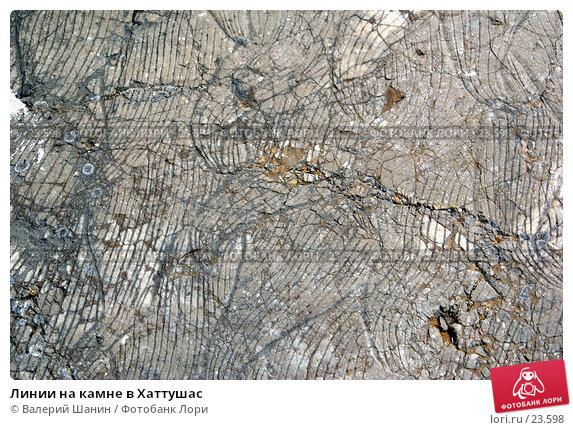 Линии на камне в Хаттушас, фото № 23598, снято 9 ноября 2006 г. (c) Валерий Шанин / Фотобанк Лори