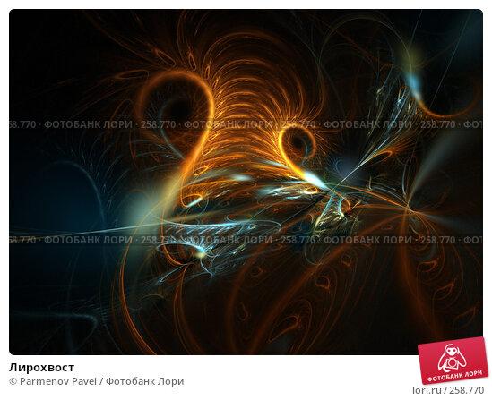 Лирохвост, иллюстрация № 258770 (c) Parmenov Pavel / Фотобанк Лори