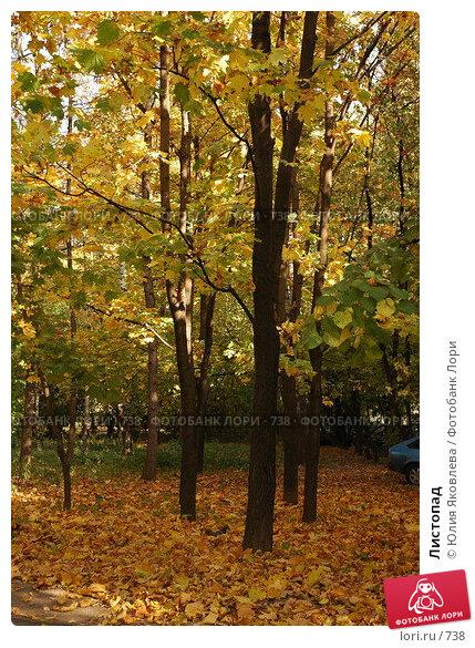 Купить «Листопад», фото № 738, снято 1 октября 2005 г. (c) Юлия Яковлева / Фотобанк Лори
