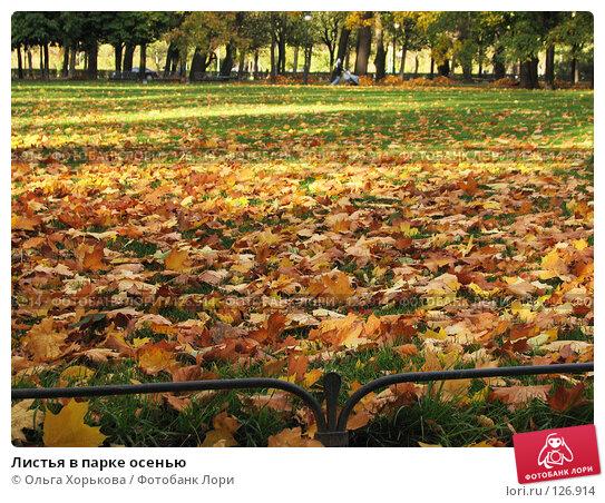 Листья в парке осенью, фото № 126914, снято 11 октября 2007 г. (c) Ольга Хорькова / Фотобанк Лори