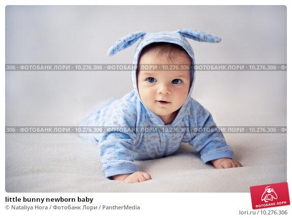 Купить «little bunny newborn baby», фото № 10276306, снято 23 февраля 2019 г. (c) PantherMedia / Фотобанк Лори