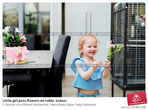 Little girl puts flowers on table, indoor. Стоковое фото, фотограф Zoonar.com/Oleksii Hrecheniuk / easy Fotostock / Фотобанк Лори