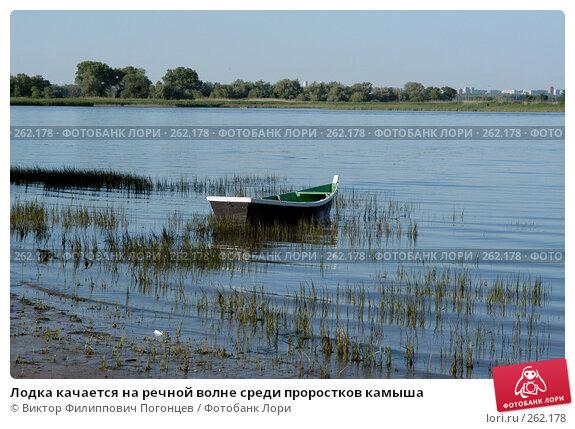 Лодка качается на речной волне среди проростков камыша, фото № 262178, снято 18 июня 2004 г. (c) Виктор Филиппович Погонцев / Фотобанк Лори