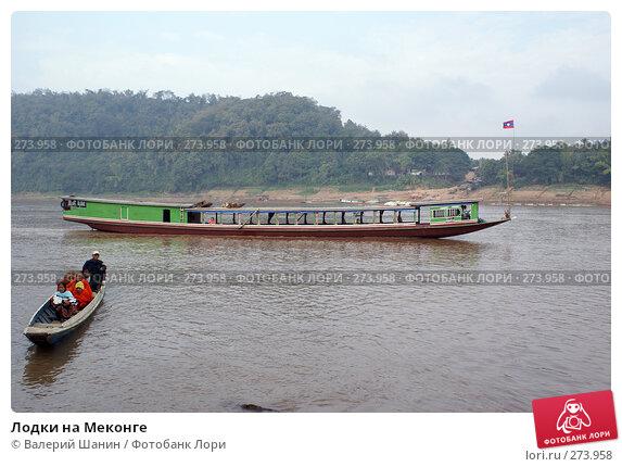 Лодки на Меконге, фото № 273958, снято 6 декабря 2007 г. (c) Валерий Шанин / Фотобанк Лори