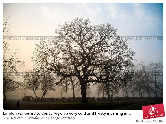 Купить «London wakes up to dense fog on a very cold and frosty morning in Finsbury Park, north London. Where: London, United Kingdom When: 28 Dec 2016 Credit: WENN.com», фото № 28700302, снято 28 декабря 2016 г. (c) age Fotostock / Фотобанк Лори