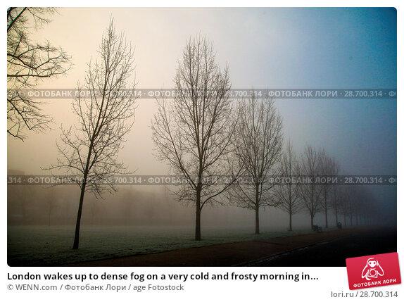 Купить «London wakes up to dense fog on a very cold and frosty morning in Finsbury Park, north London. Where: London, United Kingdom When: 28 Dec 2016 Credit: WENN.com», фото № 28700314, снято 28 декабря 2016 г. (c) age Fotostock / Фотобанк Лори