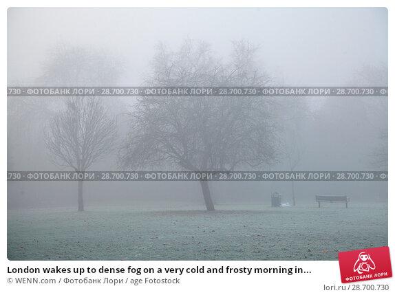 Купить «London wakes up to dense fog on a very cold and frosty morning in Finsbury Park, north London. Where: London, United Kingdom When: 28 Dec 2016 Credit: WENN.com», фото № 28700730, снято 28 декабря 2016 г. (c) age Fotostock / Фотобанк Лори