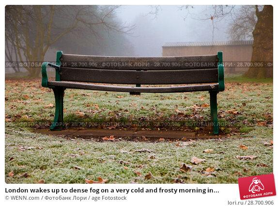 Купить «London wakes up to dense fog on a very cold and frosty morning in Finsbury Park, north London. Where: London, United Kingdom When: 28 Dec 2016 Credit: WENN.com», фото № 28700906, снято 28 декабря 2016 г. (c) age Fotostock / Фотобанк Лори