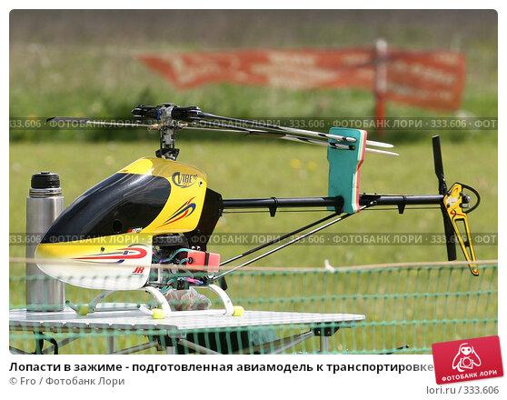 Лопасти в зажиме - подготовленная авиамодель к транспортировке, фото № 333606, снято 31 мая 2008 г. (c) Fro / Фотобанк Лори