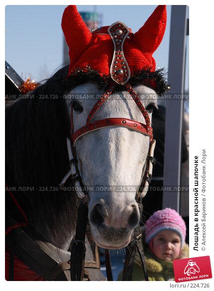 Лошадь в красной шапочке, фото № 224726, снято 9 марта 2008 г. (c) Алексей Баринов / Фотобанк Лори