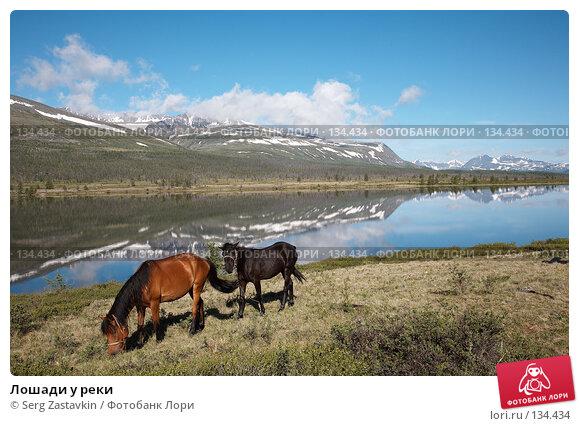 Лошади у реки, фото № 134434, снято 30 июня 2006 г. (c) Serg Zastavkin / Фотобанк Лори