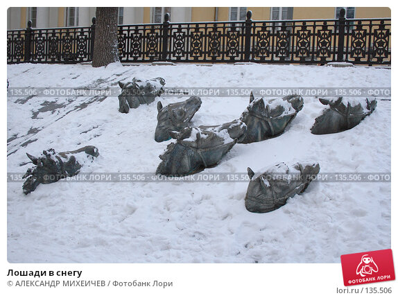 Лошади в снегу, фото № 135506, снято 1 декабря 2007 г. (c) АЛЕКСАНДР МИХЕИЧЕВ / Фотобанк Лори