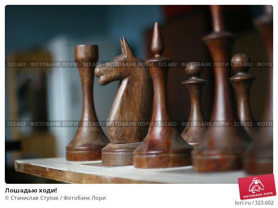 Лошадью ходи!, фото № 323602, снято 26 апреля 2008 г. (c) Станислав Ступак / Фотобанк Лори