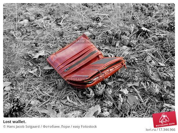 Потерять сумочку с деньгами