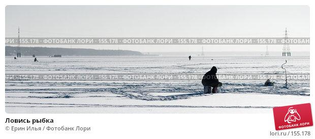 Ловись рыбка, фото № 155178, снято 15 декабря 2007 г. (c) Ерин Илья / Фотобанк Лори