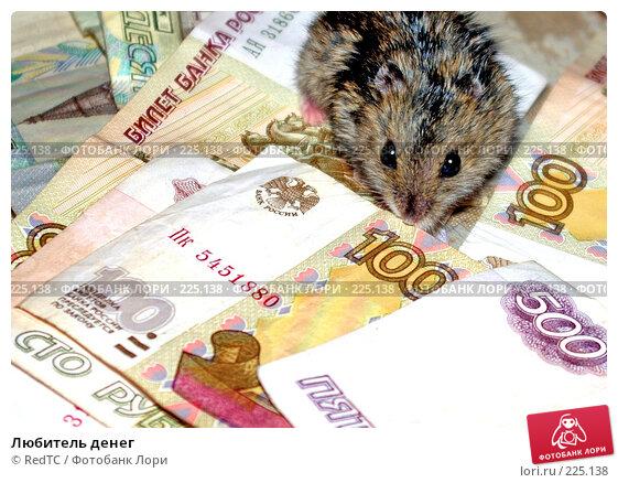 Любитель денег, фото № 225138, снято 9 марта 2008 г. (c) RedTC / Фотобанк Лори
