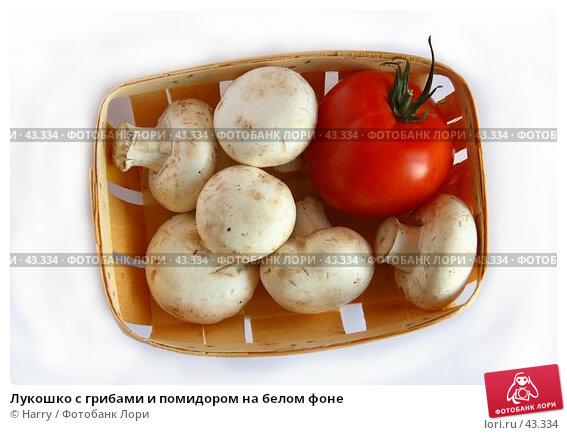Лукошко с грибами и помидором на белом фоне, фото № 43334, снято 1 июня 2005 г. (c) Harry / Фотобанк Лори