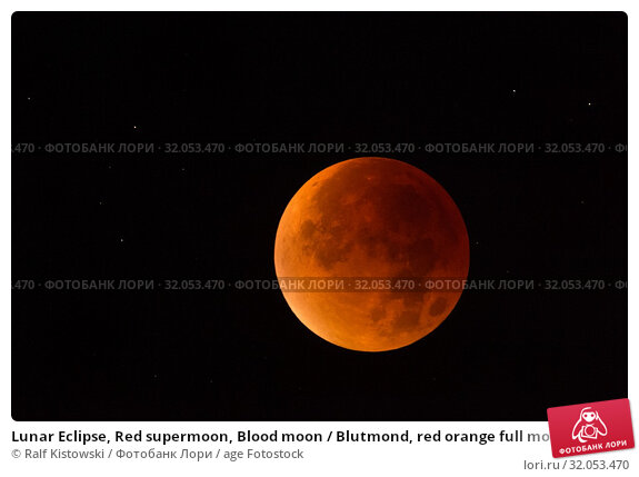 Lunar Eclipse, Red supermoon, Blood moon / Blutmond, red orange full moon with sparkling stars, 28th September 2015. Стоковое фото, фотограф Ralf Kistowski / age Fotostock / Фотобанк Лори
