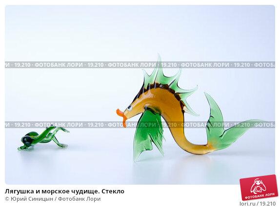 Лягушка и морское чудище. Стекло, фото № 19210, снято 22 февраля 2007 г. (c) Юрий Синицын / Фотобанк Лори