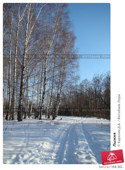 Купить «Лыжня», фото № 168382, снято 5 января 2008 г. (c) Карелин Д.А. / Фотобанк Лори