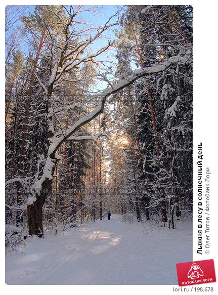 Лыжня в лесу в солнечный день, фото № 198678, снято 27 февраля 2017 г. (c) Олег Титов / Фотобанк Лори