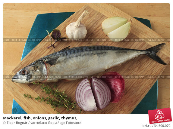 Mackerel, fish, onions, garlic, thymus,. Стоковое фото, фотограф Tibor Bognár / age Fotostock / Фотобанк Лори