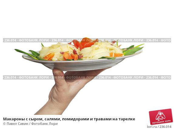 Макароны с сыром, салями, помидорами и травами на тарелке, фото № 236014, снято 24 января 2017 г. (c) Павел Савин / Фотобанк Лори