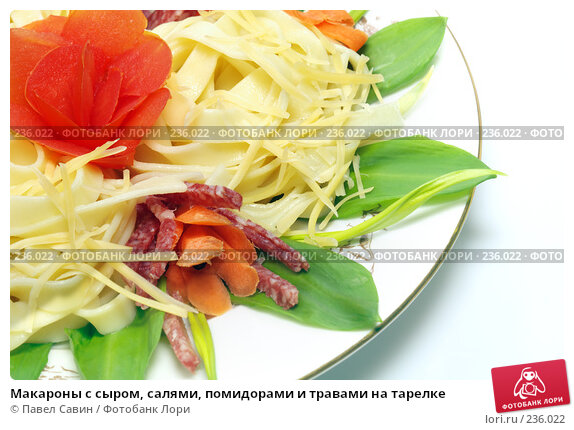 Макароны с сыром, салями, помидорами и травами на тарелке, фото № 236022, снято 25 мая 2017 г. (c) Павел Савин / Фотобанк Лори