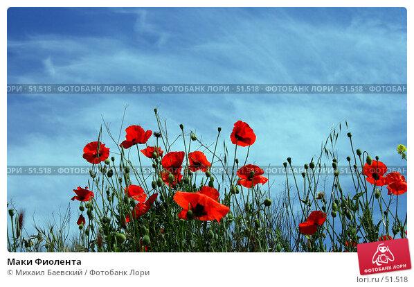 Купить «Маки Фиолента», фото № 51518, снято 20 мая 2007 г. (c) Михаил Баевский / Фотобанк Лори