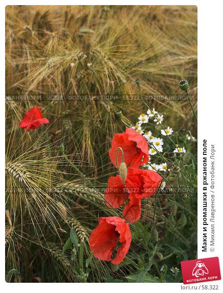 Купить «Маки и ромашки в ржаном поле», фото № 58322, снято 22 июня 2006 г. (c) Михаил Лавренов / Фотобанк Лори