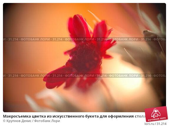 Макросъемка цветка из искусственного букета для оформления стола в ресторане, фото № 31214, снято 20 декабря 2007 г. (c) Крупнов Денис / Фотобанк Лори