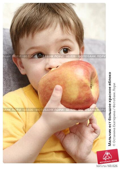 Мальчик ест большое красное яблоко, фото № 60026, снято 11 апреля 2007 г. (c) Останина Екатерина / Фотобанк Лори