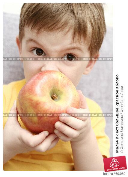 Мальчик ест большое красное яблоко, фото № 60030, снято 11 апреля 2007 г. (c) Останина Екатерина / Фотобанк Лори