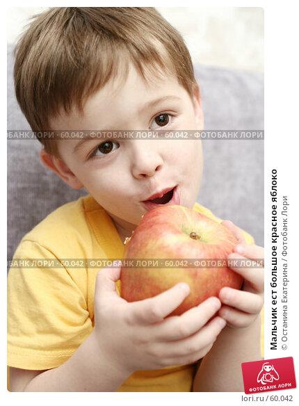 Мальчик ест большое красное яблоко, фото № 60042, снято 11 апреля 2007 г. (c) Останина Екатерина / Фотобанк Лори
