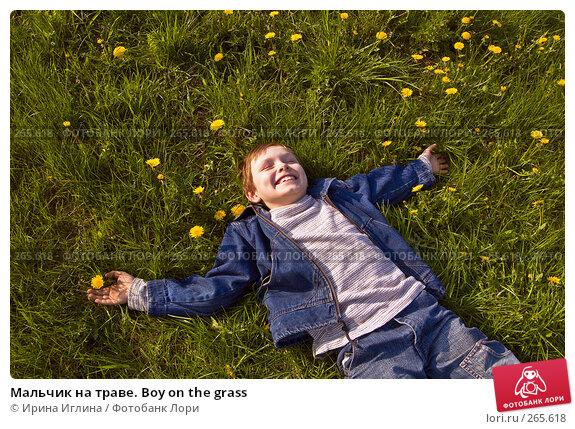 Мальчик на траве. Boy on the grass, фото № 265618, снято 28 апреля 2008 г. (c) Ирина Иглина / Фотобанк Лори