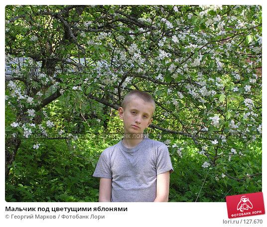 Мальчик под цветущими яблонями, фото № 127670, снято 6 июня 2004 г. (c) Георгий Марков / Фотобанк Лори