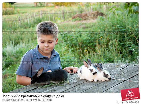 Купить «Мальчик с кроликами в саду на даче», фото № 4030938, снято 8 августа 2011 г. (c) Володина Ольга / Фотобанк Лори