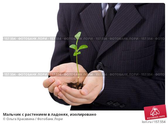 Мальчик с растением в ладонях, изолировано, фото № 157554, снято 21 октября 2007 г. (c) Ольга Красавина / Фотобанк Лори