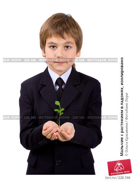 Мальчик с растением в ладонях, изолировано, фото № 228166, снято 21 октября 2007 г. (c) Ольга Красавина / Фотобанк Лори
