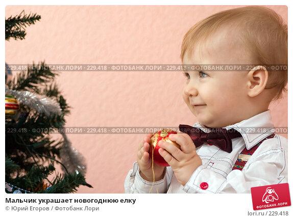 Мальчик украшает новогоднюю елку, фото № 229418, снято 7 января 2008 г. (c) Юрий Егоров / Фотобанк Лори