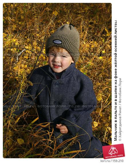 Мальчик в пальто и в шапке на фоне жёлтой осенней листвы, фото № 159210, снято 9 октября 2005 г. (c) Хайрятдинов Ринат / Фотобанк Лори