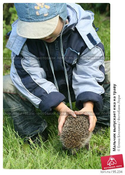 Мальчик выпускает ежа на траву, фото № 95234, снято 12 сентября 2007 г. (c) Елена Блохина / Фотобанк Лори