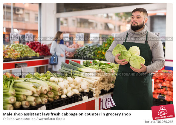 Male shop assistant lays fresh cabbage on counter in grocery shop. Стоковое фото, фотограф Яков Филимонов / Фотобанк Лори